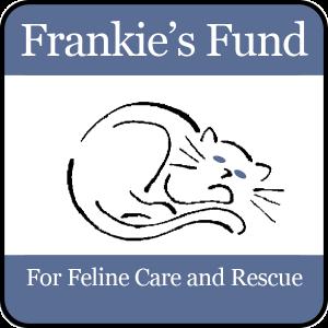 Adopt a cat in NYC New York: Frankie's Feline Fund